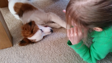 Simone en Adax (Boef) Puppybezoek