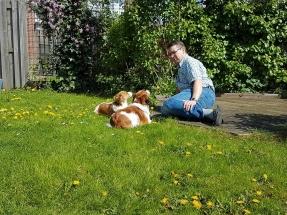 Gijsbert met de honden