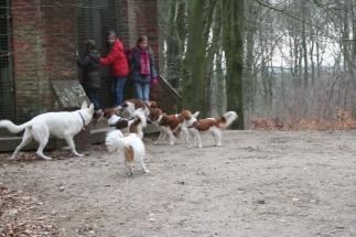 Simone, Quinty en Lisette VHNK wandeling februari 2013